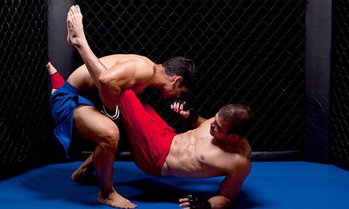 Image for MMA Training