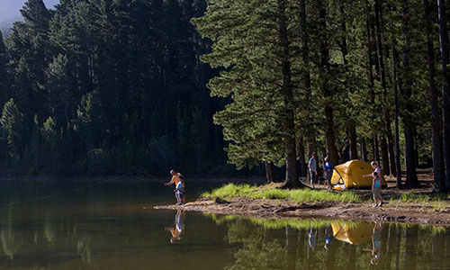 Image for Camp/Fishing