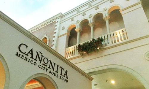 Image for Canonita